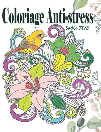 Choisir le Meilleur Carnet de Coloriage Anti-Stress